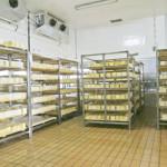 El equipo básico en los almacenes frigoríficos